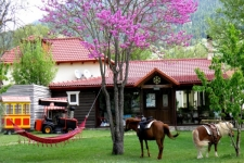 Ninemia Bungalows  Family Resort & Farm